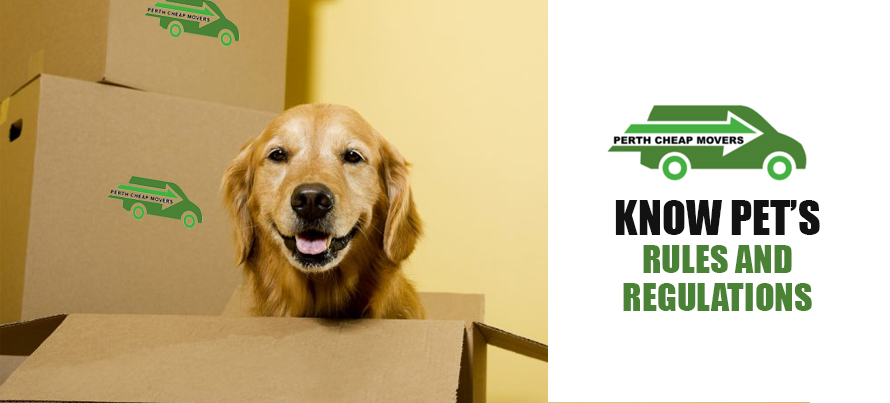 Know Pet's Rules and Regulations