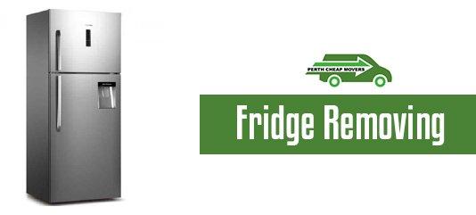 fridge removal