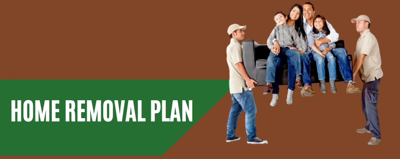 Home Removal Plan